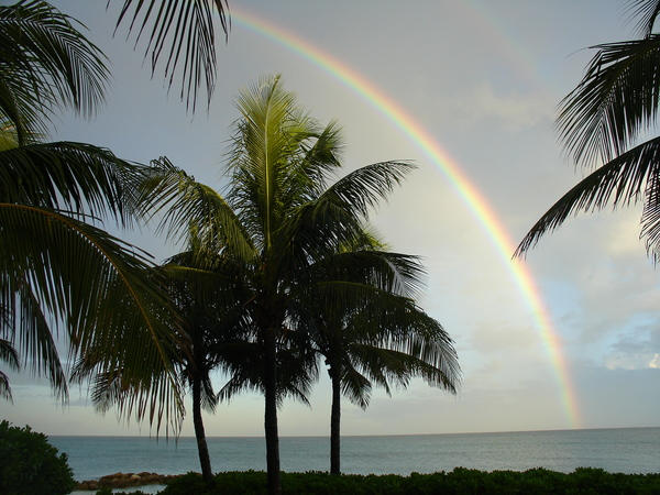 Rainbow by PatriciaVazquez