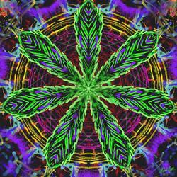 Cannabis Mandala by LelandGreen
