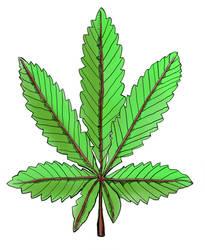 Cannabis Poster - Large Leaf 002 by LelandGreen