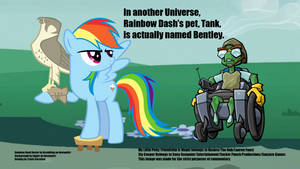 Rainbow Dash's pet's Real Name