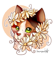 Daisies [comm] by Saurgazing