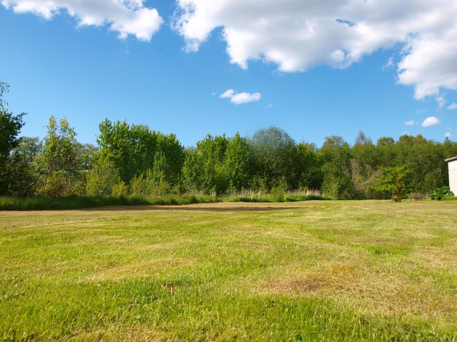 Grassy Field 02 by K1ku-Stock on DeviantArt