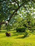 A Walk in the Garden by K1ku-Stock