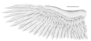 White Eagle Wing