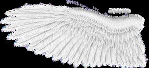 White Eagle Wing