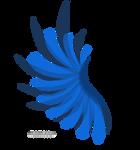 Transparent Blue Wing