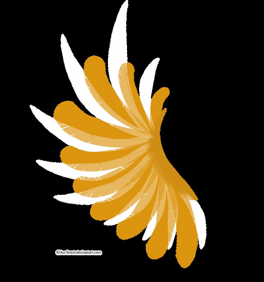 Transparent Orange and White Wing
