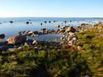Saaremaa Seaside 13
