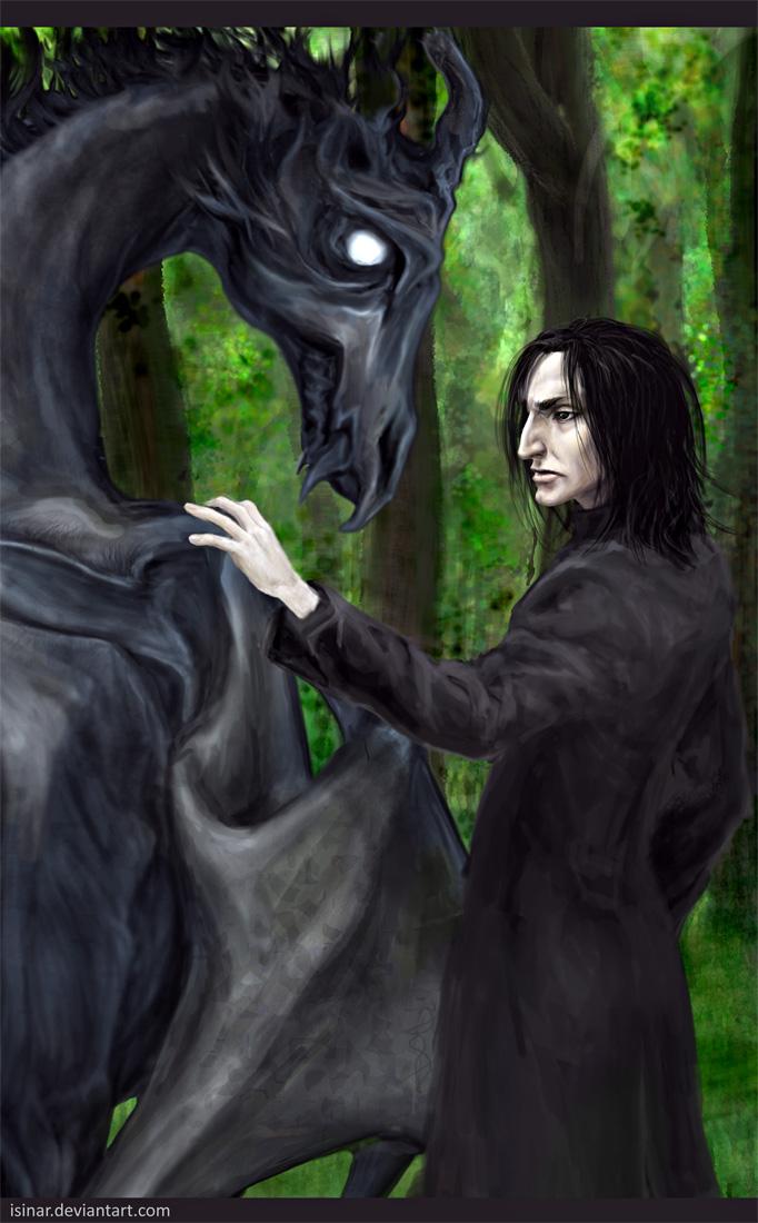 Snape's toy