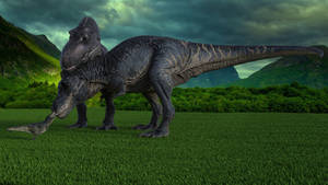 Tyrannosaurus Family