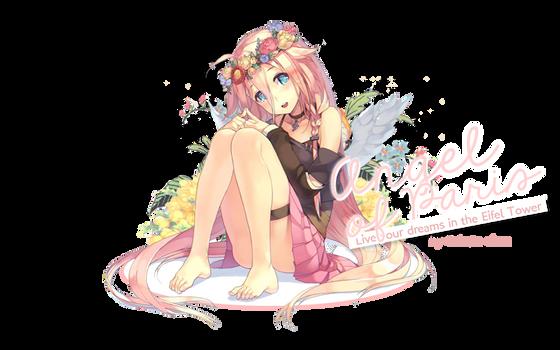 Angel of Paris