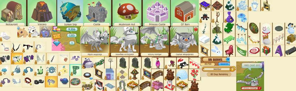 Animaljam membership account AUCTION!! by RaiderPonyArtist