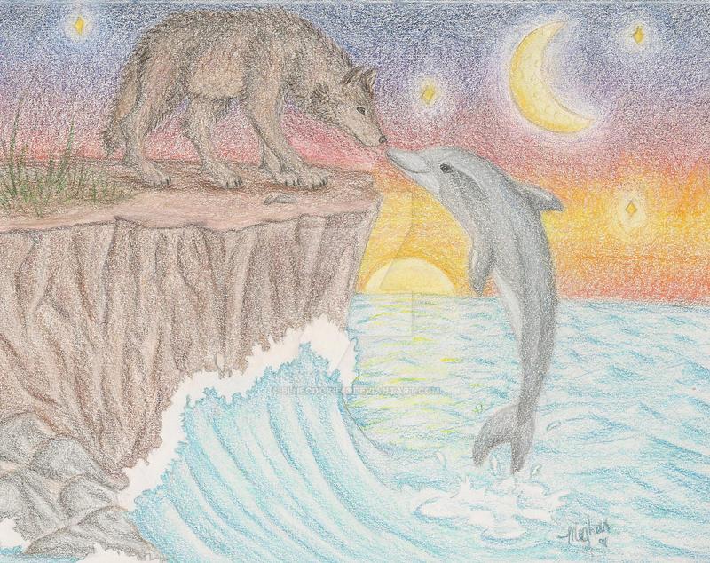 Wolf-Dolphin by bluecookie13 on DeviantArt - photo#15