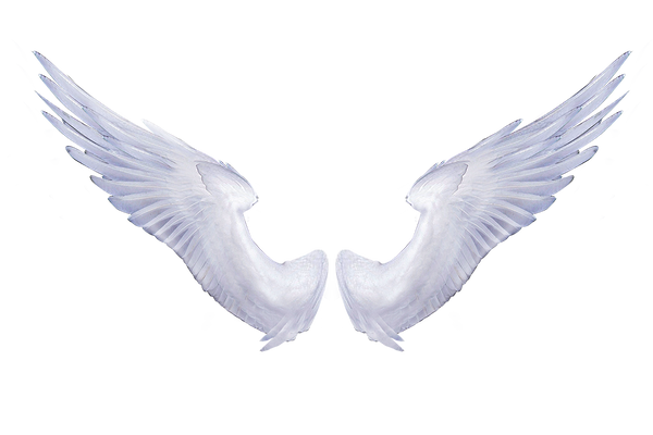 Angel Wings White 1 by Paw-Prints-Designs on DeviantArt