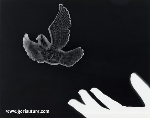 Bird in Hand by Gori-Suture