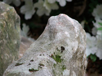 Moss Rock by Sweden3
