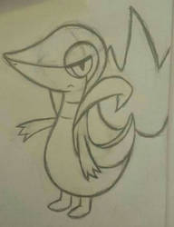 Snivy Sketch