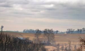 Foggy February Farmland