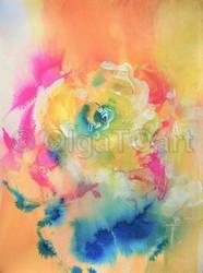 Duhova ruze_Rainbow Rose