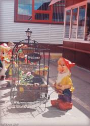 dutch gnome
