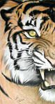 Panthera Tigris by Crystal-Cat