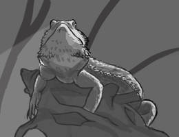 Day 4: Bearded Dragon by amandas-sketches