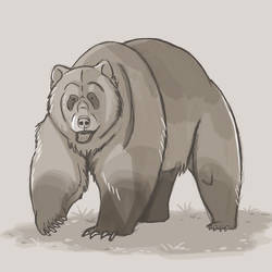 Day 5: Grizzly Bear