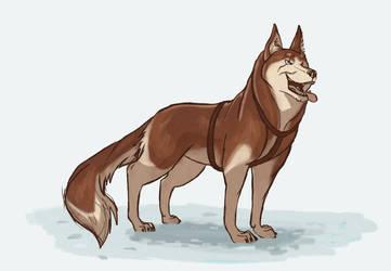 Day 7: Malamute/Husky thing