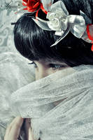 Beauty behind a curtain by New-Afnan