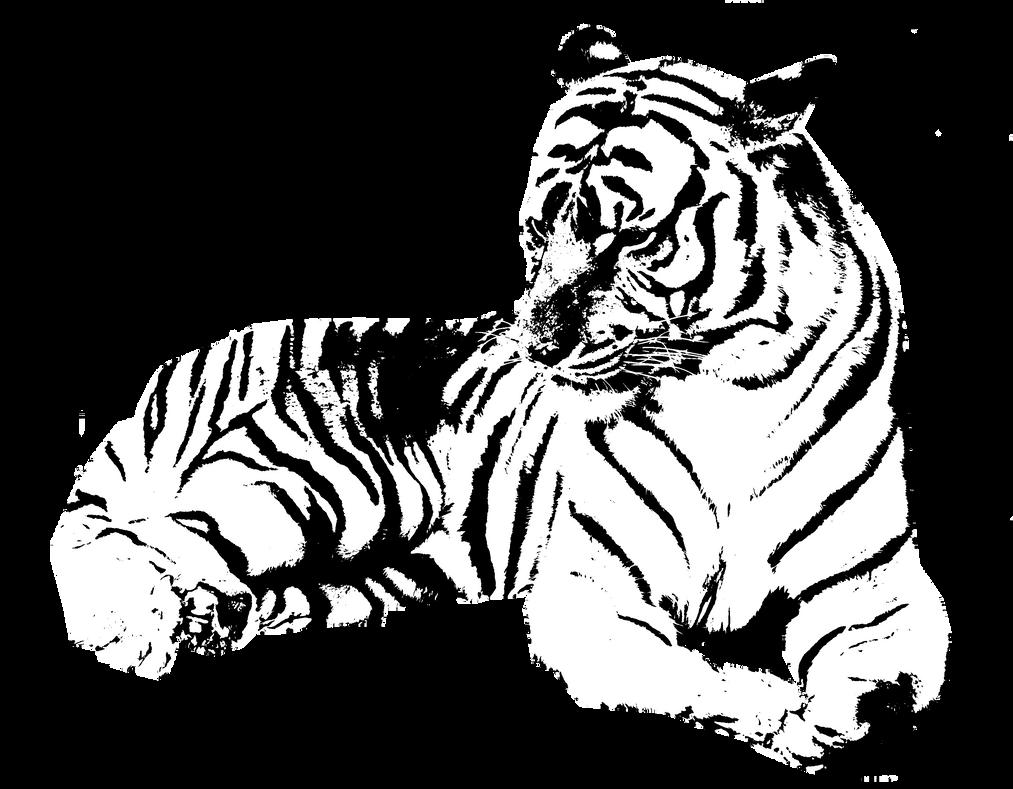 tiger stencil by airgraffiti on deviantart