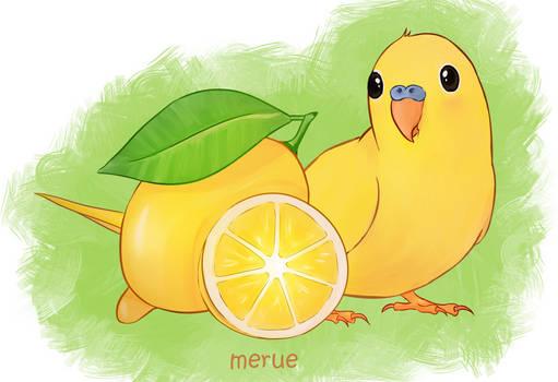 Lemon Budgie
