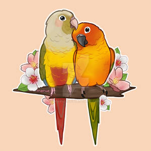 [Commission] Cute Conures
