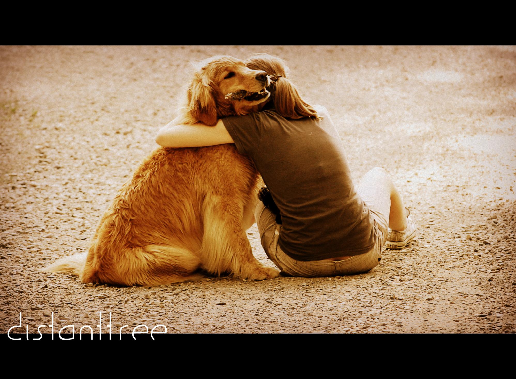 Volim te kao prijatelja, psst slika govori više od hiljadu reči - Page 2 Best_Friends_Forever_by_DistantTree