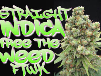 Indica by Victor492