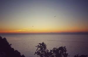 Evening flight by Aino6