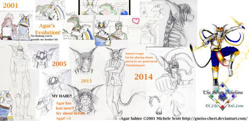 Agar Sabier's Evolution 2001 to 2014 by Gneiss-chert