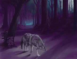 Lone wolf by mangis