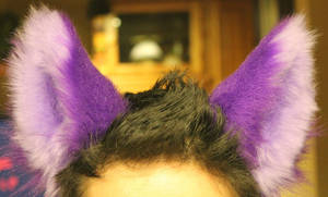 Pretty Purple Animal Ears