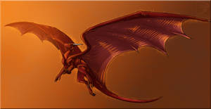 Comish - Sunlit Wings