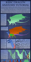 Tutorial - Basic Dragon Anatomy 2015