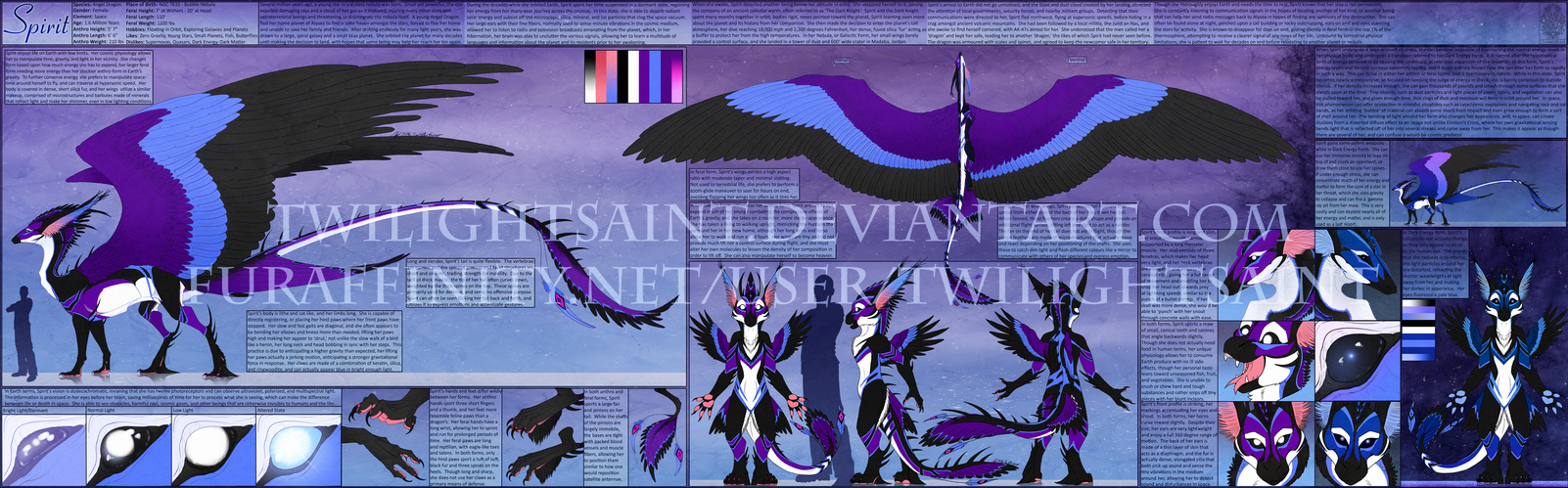 Personal - Spirit Angel Dragon Reference Sheet by TwilightSaint