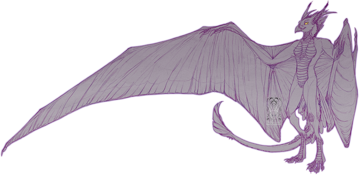 Sketch Comish - Wyvern Gryph