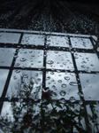 Rain by RexTull