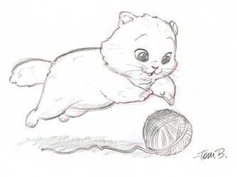 Big fluffy kitten by tombancroft