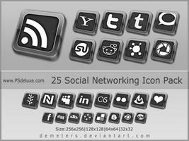 Elegant Social Network Icon pack - update 2012 by demeters