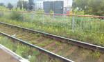 Blooming railway
