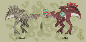 Predatory Creatures F M