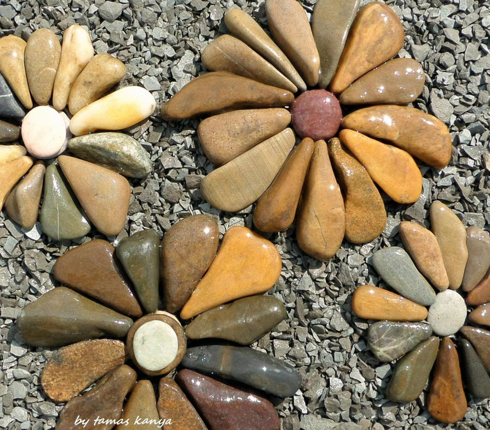 Land art-stone flowers in hungary by tamas kanya by tom-tom1969