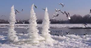 Ice art from Hungary by tamas kanya