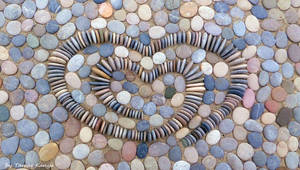 Pebble art from Hungary by Tamas Kanya by tom-tom1969